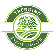 trending farms ltd logo